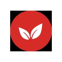 Natural - Plant Based